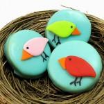 birds4b