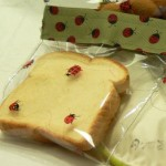 make your own snack/sandwich bags