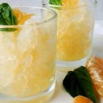 Orange-Basil Granita-1-9
