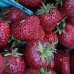 Strawberries.jpg (28 KB)